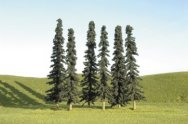 "2"" - 4"" Conifer Bulk Trees (36 per Bag)"