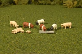 Pigs - HO Scale