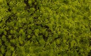 "Light Green Tufted Grass Mat (one 11.75"" X 7.5"" sheet)"
