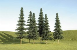 "8"" - 10"" Spruce Trees"