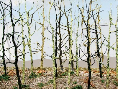 Wood's Edge Trees - Bare (14 per pack)