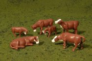 Cows - Brown & White - HO Scale