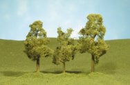"3"" - 4"" Sycamore Trees"