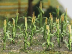 "Corn Stalks - 1"" Tall (30 per pack)"