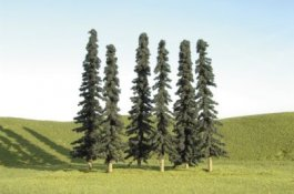 "8"" - 10"" Conifer Trees"