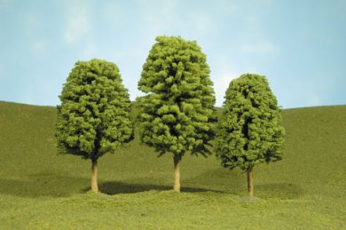"3"" - 4"" Deciduous Trees"