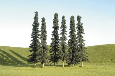 "3"" - 4"" Conifer Trees - Click Image to Close"